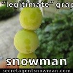 legitimate_grape_snowman