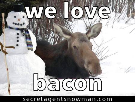 we love bacon